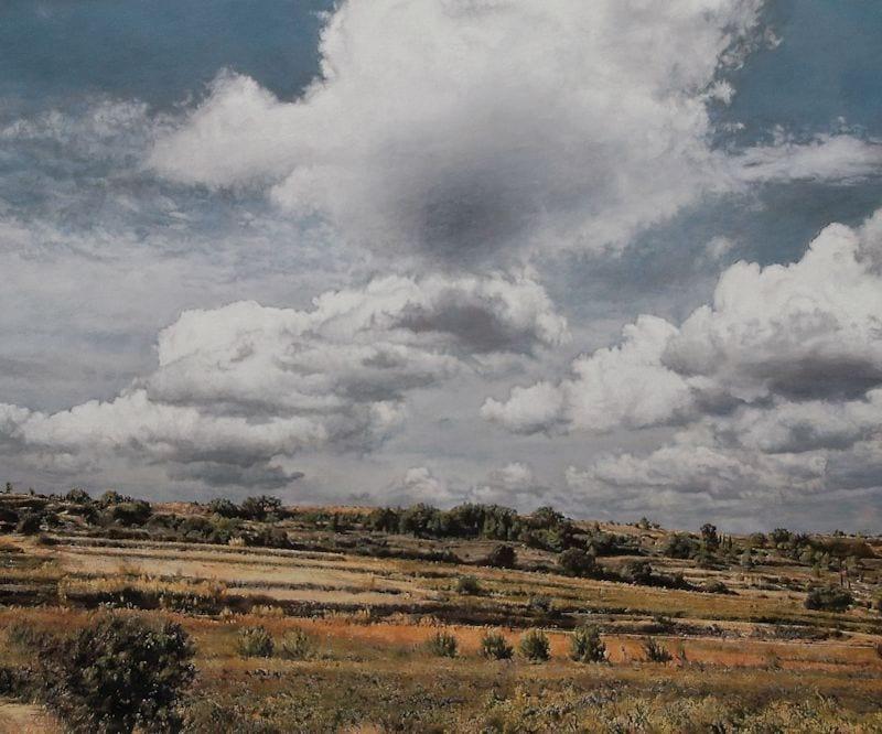 © Heike Negenborn, Sunny hillside 1, 2015