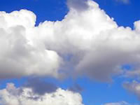 Do microbes make their home in clouds?
