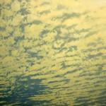 "Midday Pattern, acrylic on canvas, 80"" x 91"" © Lisa Grossman, Lawrence, Kansas, USA"