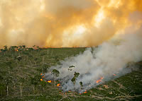Amazon fires - photo: © Greenpeace