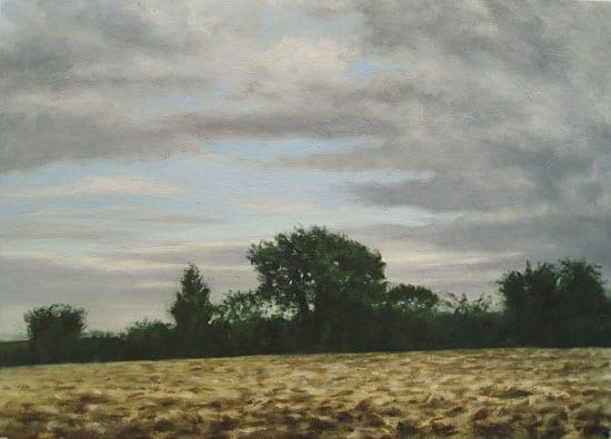 Late Evening Hedge © Christopher Paris