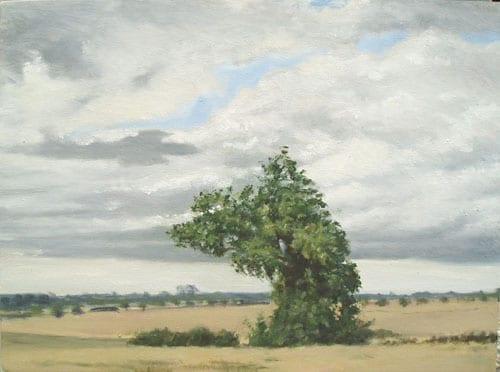 Old Tree © Christopher Paris