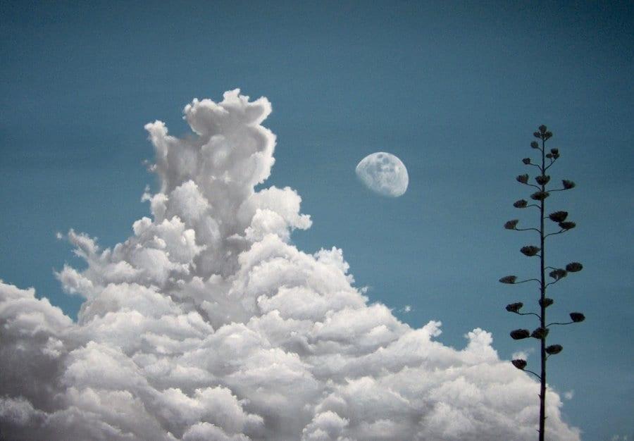 Noon Moon © Jose Pedro