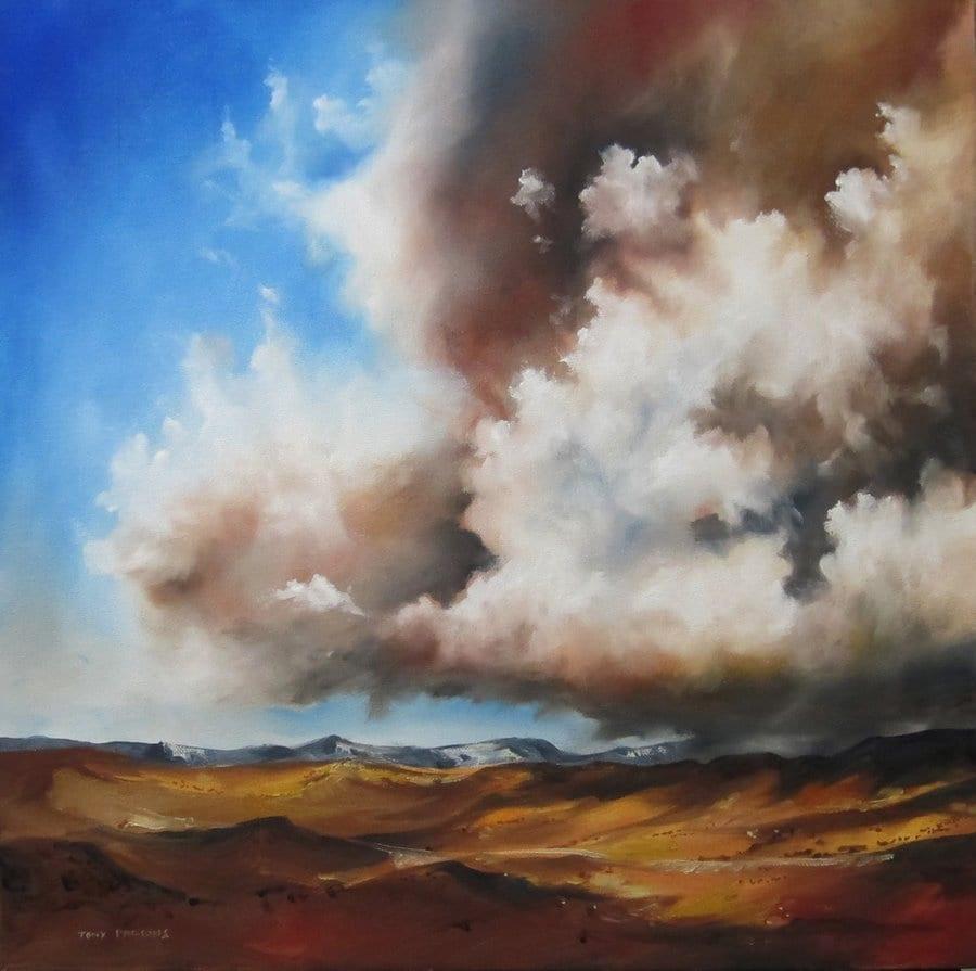desert storm © Tony Parsons