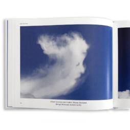 Clouds That Look Like Things (detail)