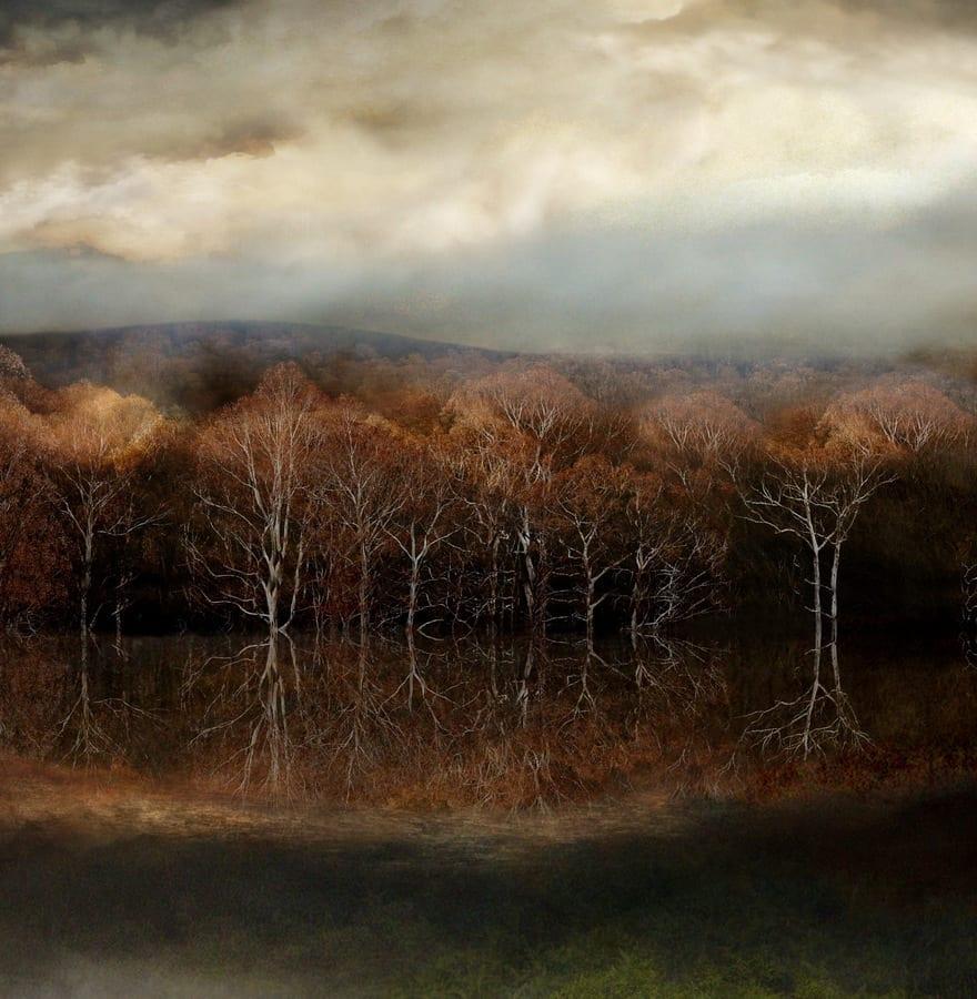 Forgotten © Rebekah Stuart