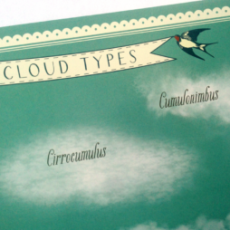 Ten Cloud Types Poster (detail)