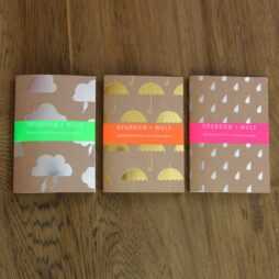 Set of three notebooks with foil blocked covers
