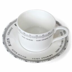 Barometer Cup and Saucer