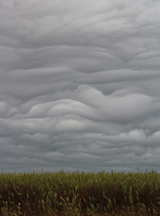 Asperitas clouds over north Dorset, UK.