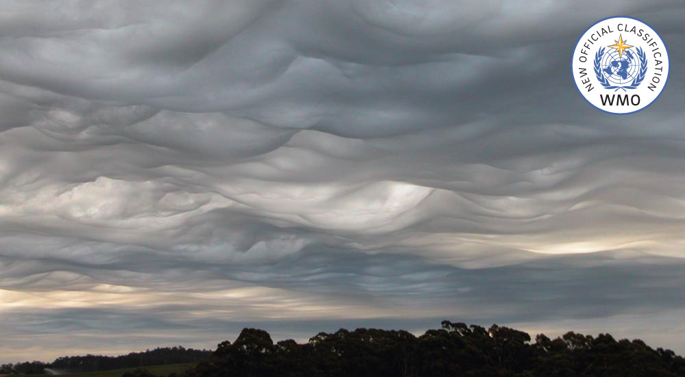 Image result for asperitas cloud