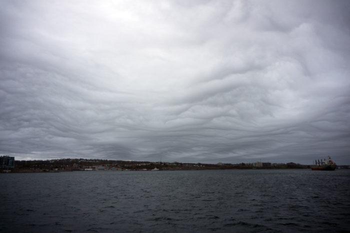 An asperitas formation over Halifax Harbour, Nova Scotia.