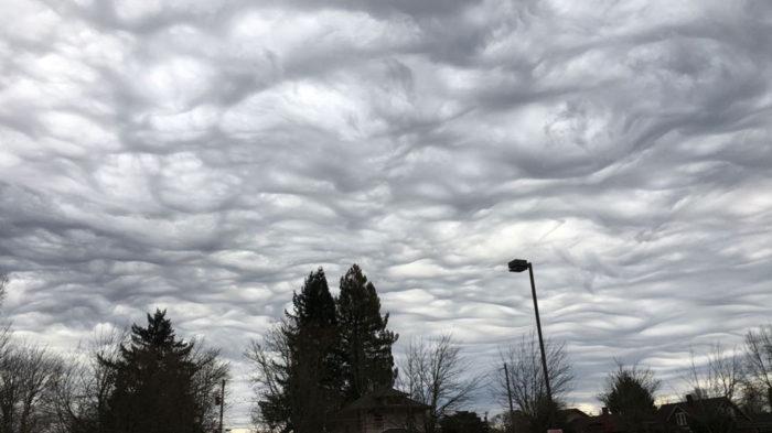 An asperitas formation over Camas, Washington, US.