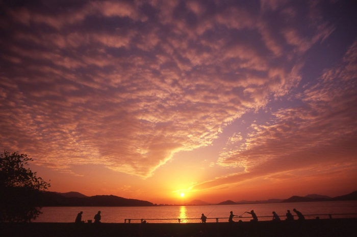 A sunset over Odo Park , Fukuoka City, Japan.