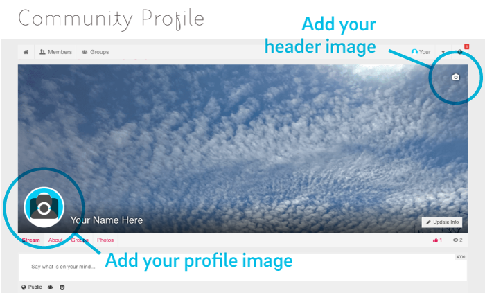 Where to add your profile and header image