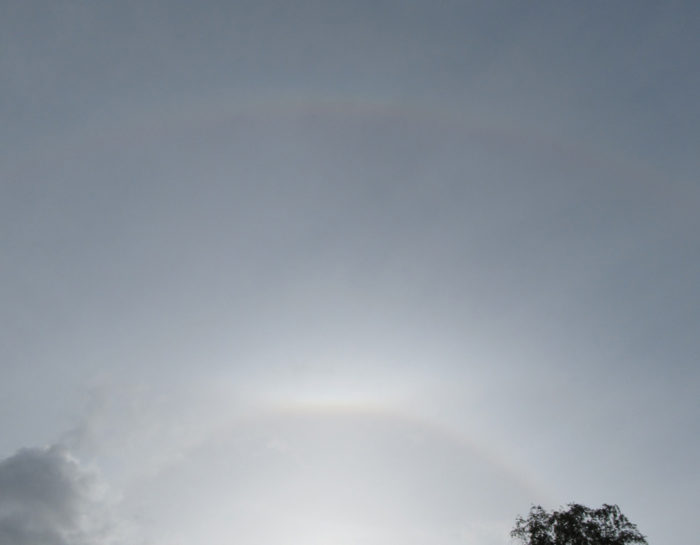 A halo, upper tangent arc and at the top of the image a supralateral arc, spotted over Erm, Netherlands.