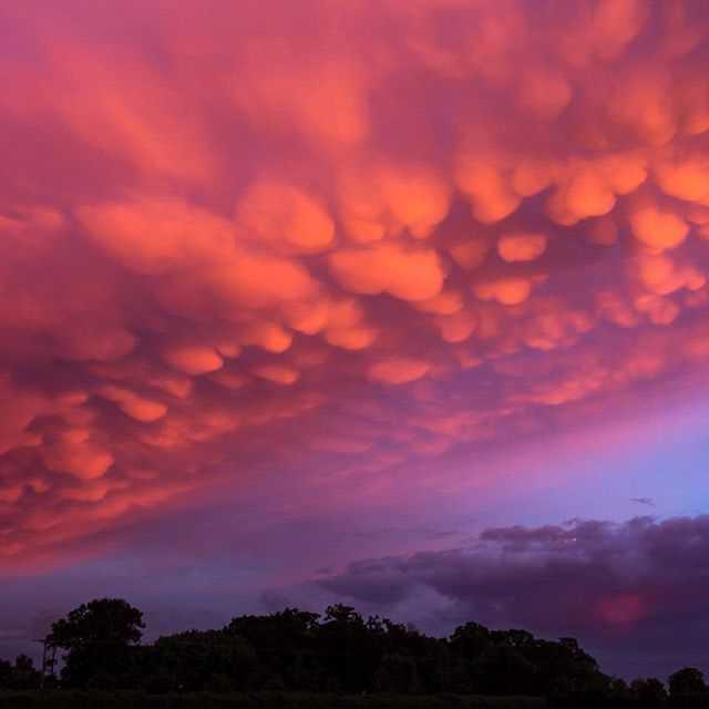 Sunset in Buckinghamshire