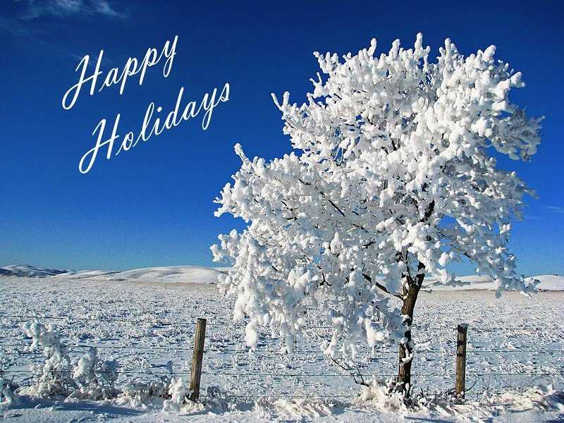 Happy-Holidays-Tree-Covered-With-Snow-Picture