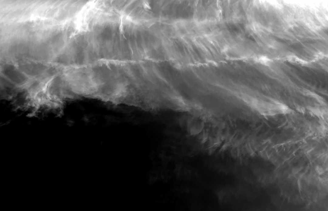 IMG_9053_BW_Tattered Veil