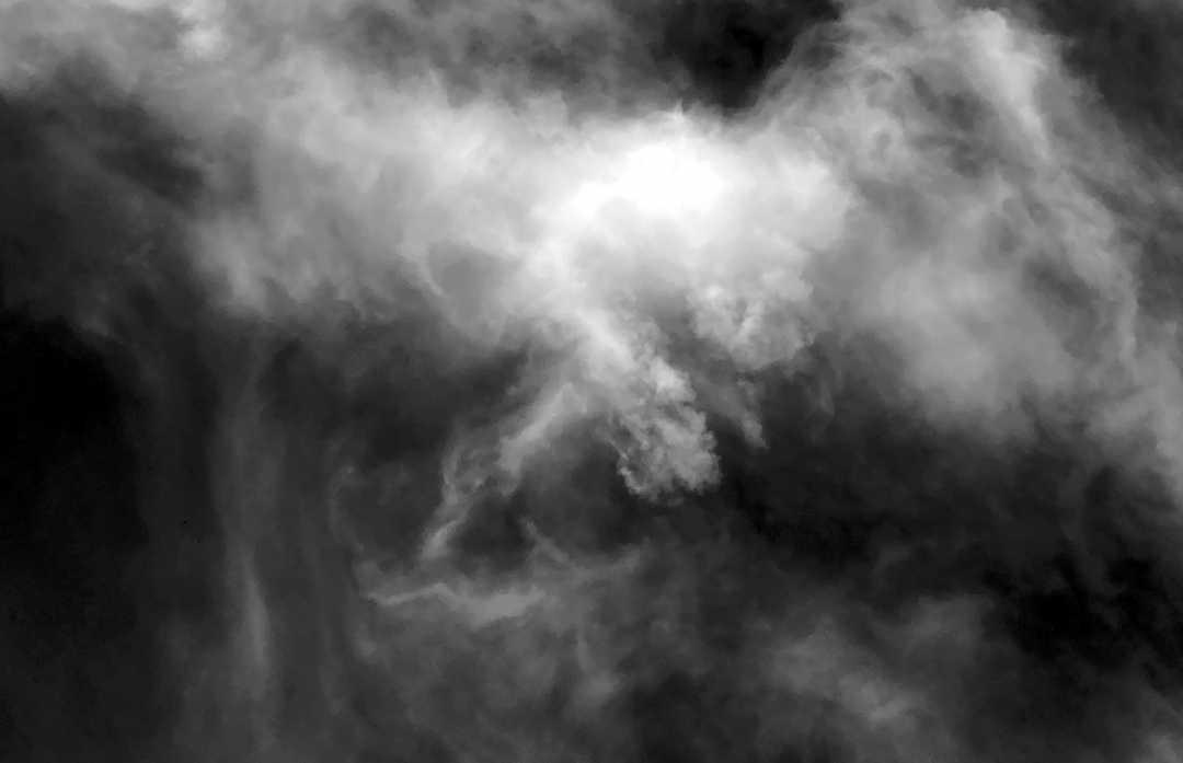 IMG_3307_BW_Misty Mystical Manifestations